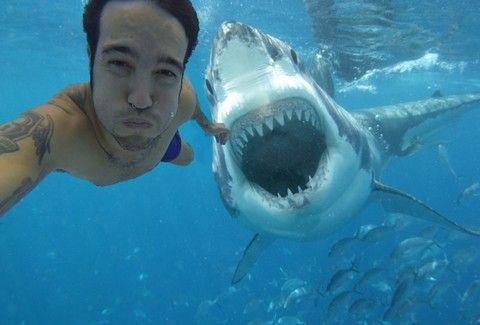 Selfies – Το φαινόμενο της αυτοφωτογράφησης