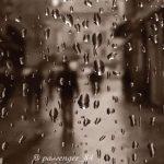 Μαριάννα Ιωαννίδου: «Πάντα η φωτογραφία θα μου δείχνει το λάθος, το σωστό, το ωραίο, το άσχημο»