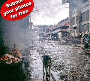 Διαγωνισμός Φωτογραφίας Δρόμου από την Blank Wall Gallery