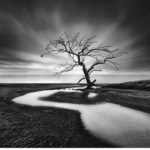 Silent Waters – έκθεση φωτογραφίας του Γιώργου Διγαλάκη