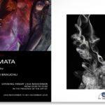 Somata सोम | Έκθεση Φωτογραφίας Stephan Brauchli