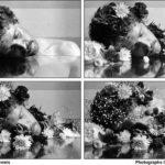 Workshop: Μέθοδοι σύνταξης και αφήγησης της φωτογραφικής εικόνας