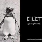 Dilettanti – ομαδική έκθεση φωτογραφίας