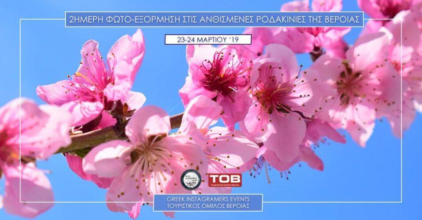 """""""Ανθισμένες Ροδακινιές"""" – Φωτογράφιση με την ομάδα των Greek Instagramers Events"""