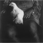 Debbie Fleming Caffery - Η σκιά, το φως και το σκοτάδι στις φωτογραφίες της