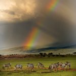 Tanzania – Photo workshop με την Μάρω Κουρή