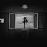«Observatory» & «Washing Machine» – παράλληλες εκθέσεις των Τάκη και Απόστολου Ζερδεβά στην γκαλερί Σκουφά