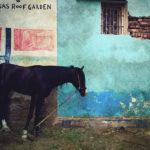 My Egypt: ομαδική έκθεση φωτογραφίας από την ομάδα Διαδρομές στην Blank Wall Gallery