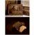 «Φωτοπόροι», «ΚΛΙΚers», «Φ» | 3 φωτογραφικές ομάδες - 5 ομαδικές εκθέσεις