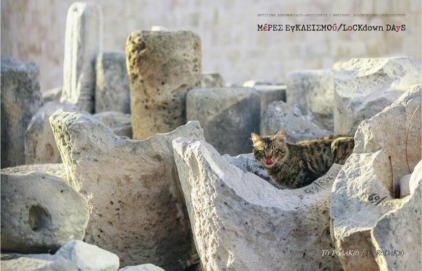Φωτοδός | Παρουσίαση της φωτογράφου-δημοσιογράφου Αντιγόνης Σολομωνίδου Δρουσιώτου