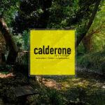 1o Summer Camp Calderone