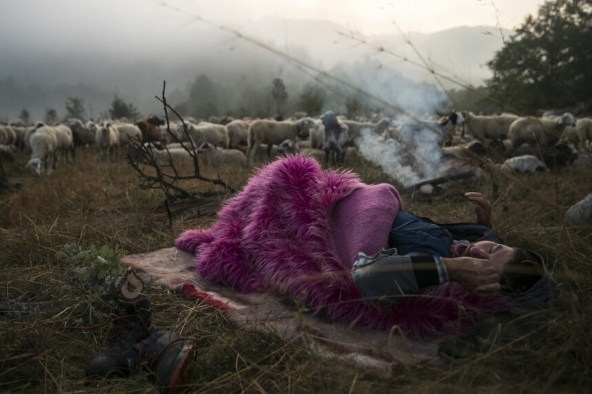 Athens Photo World 2021 || Απονομή βραβείων Yannis Behrakis και Athens Photo World