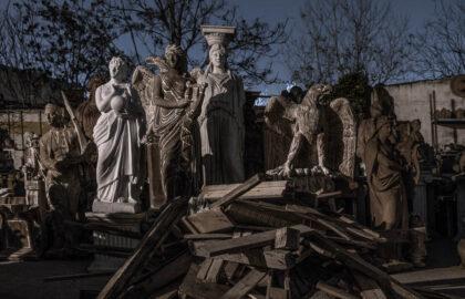 """Dark Tree"" – Ρέα Παπαδοπούλου (GR)  | Ατομική Έκθεση | Thessaloniki Photobiennale 2021"